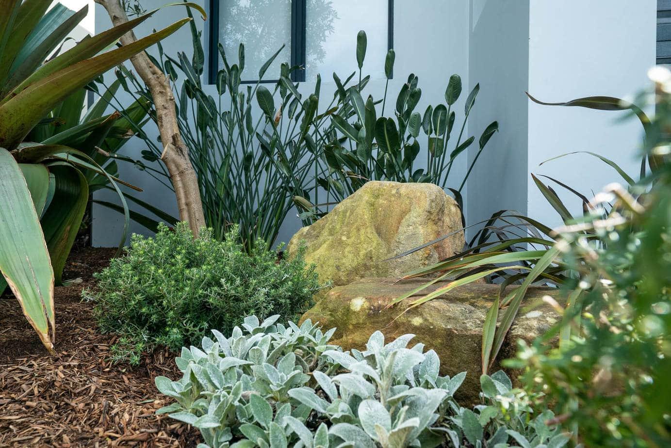 modern coastal landscape design, Sydney, Voguer&Vine