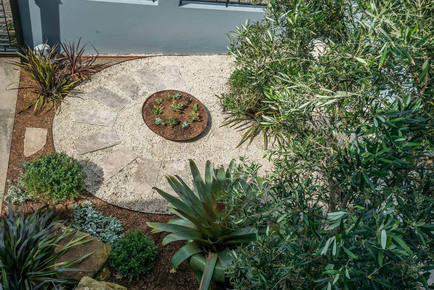 Dover Heights coastal garden design, Sydney, Vogue&Vine