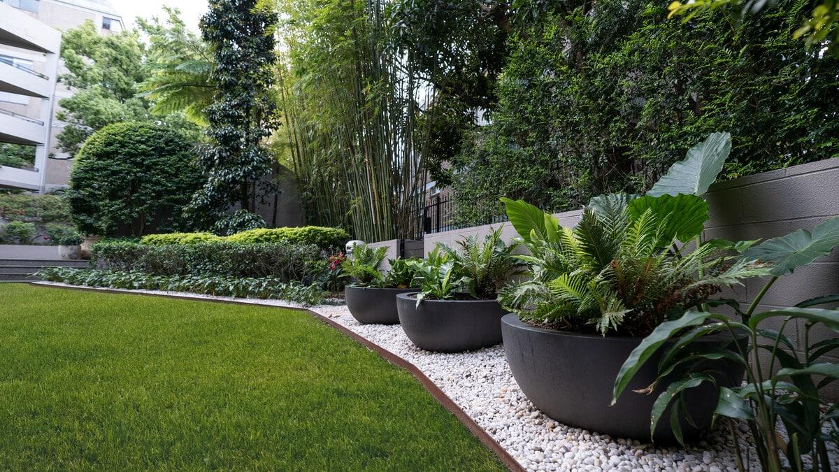 apartment garden rushcutters bay