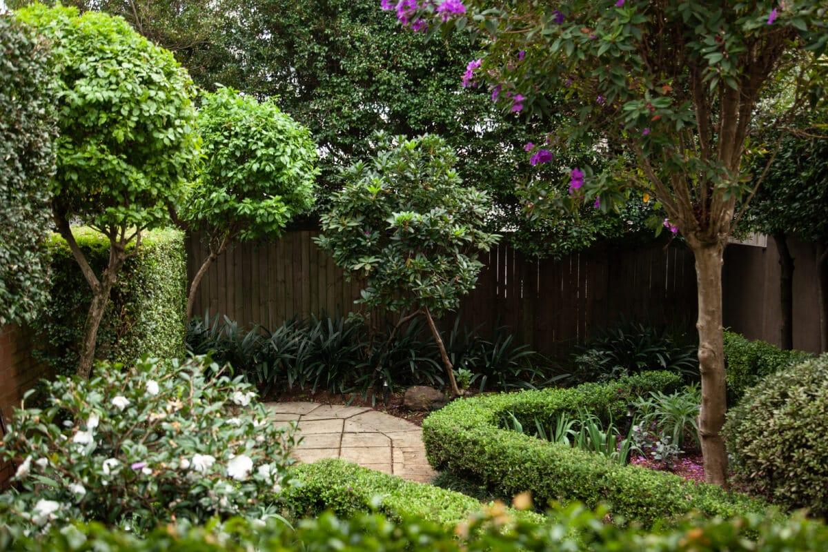 formal terrace garden design Sydney, vogue&vine